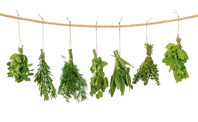 Herb bundles hanging for drying