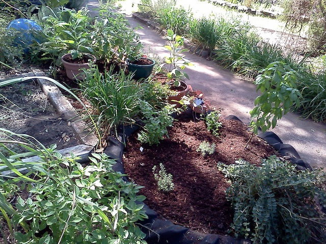 Newly Mulched Bed!