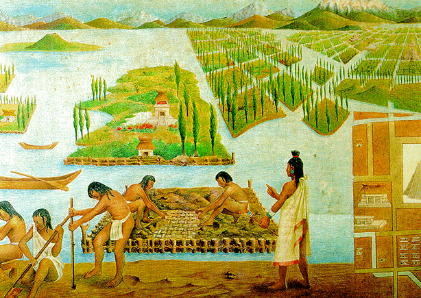 aztec-reef-hydroponic-gardening-chinampa