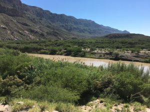 View of the Rio Grande from the Park. Mesquite Trees fill the low lying bank of the river.